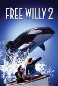 free willy 2 stream
